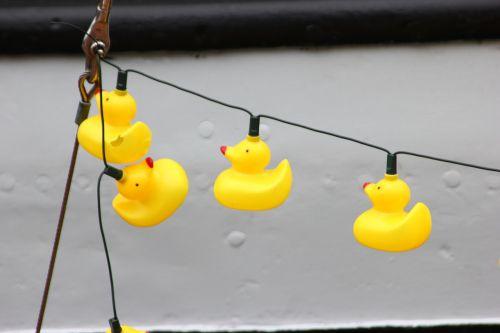 plastic ducks empty
