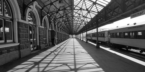 platform dunedin light