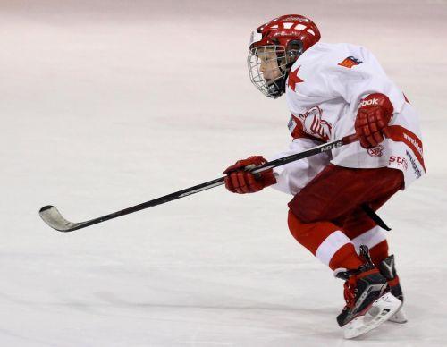 player hockey hockey player