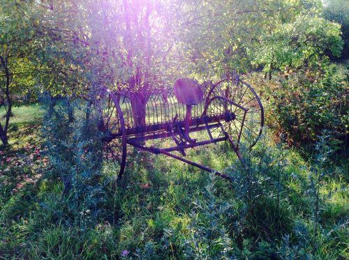 plow greens nature