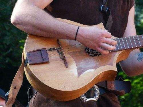 plucked string instrument guitarist guitar
