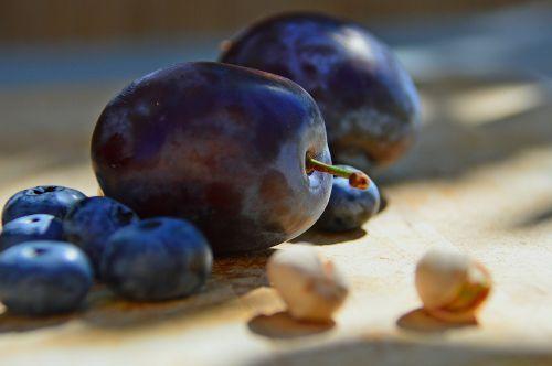 plum sloe fruit