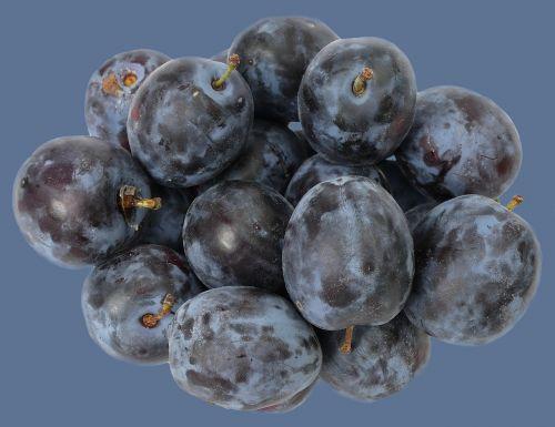 plum fruit stone fruit