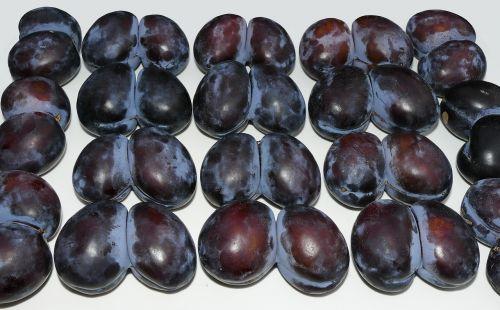 plum twin twin plum
