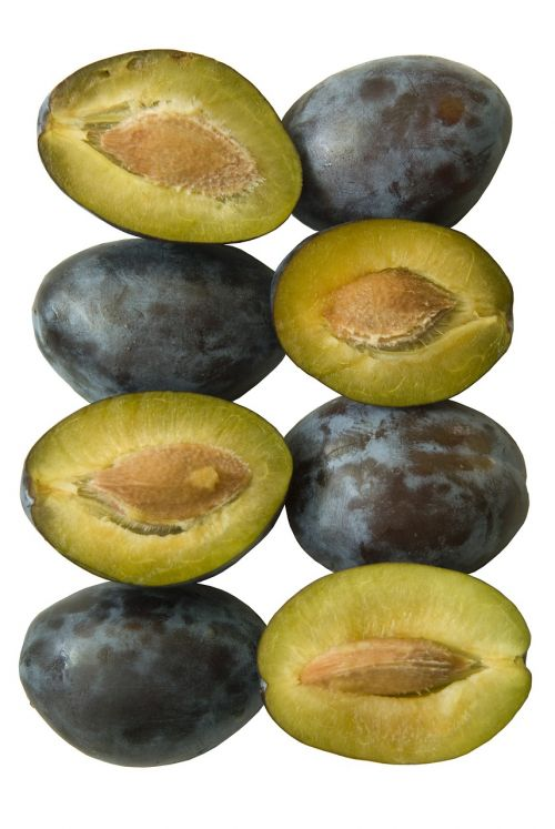 plum food organic
