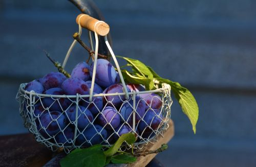 plums fruit fruit basket
