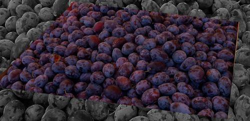 plums plum fruit