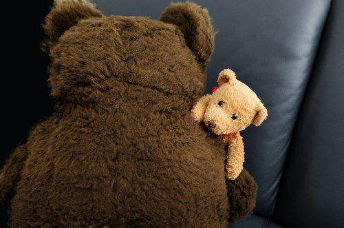 plush toys  bears teddy bears  friendship