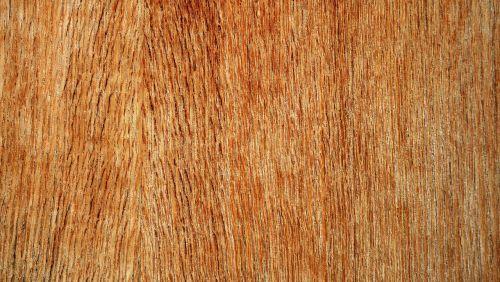 plywood wood texture