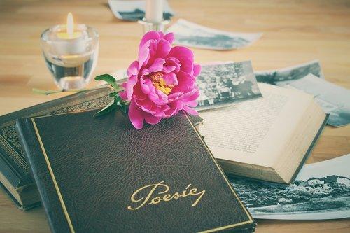 poetry album  book  leather