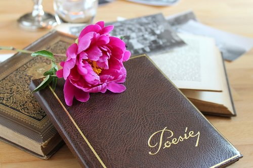 poetry album  book  leather