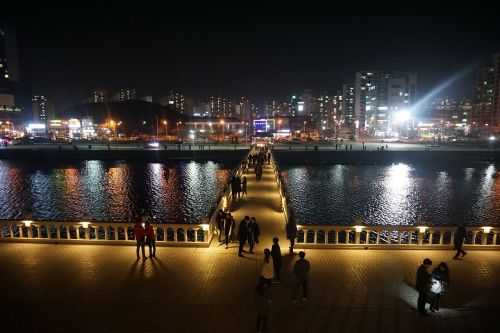 pohang night view landscape