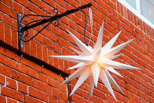 poinsettia star christmas