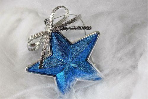 poinsettia blue christmas