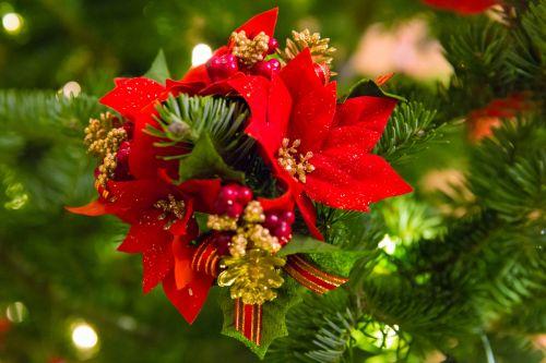 Poinsettia Christmas Decoration