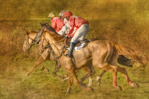 point to point horse racing black forest farm