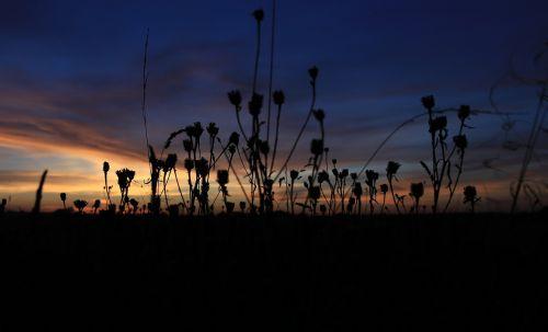 poland clouds sunset