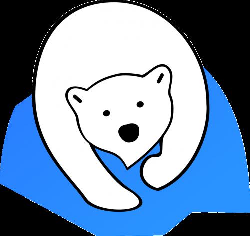polar bear ice bear animal