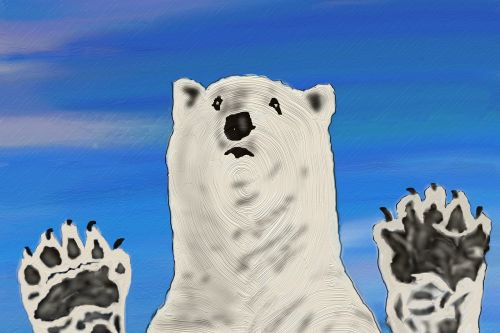 polar bear zoo predator