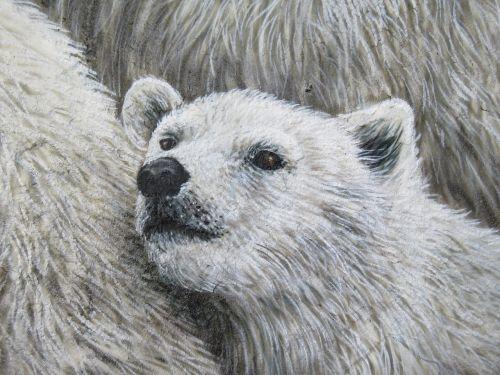 polar bear wall art wall