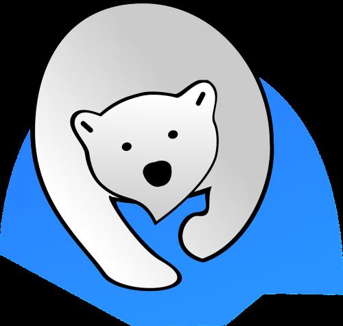 polar bear bear polar
