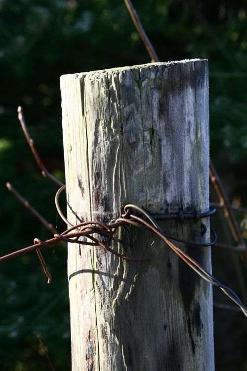pole wood wire