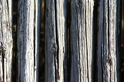 poles wood fence