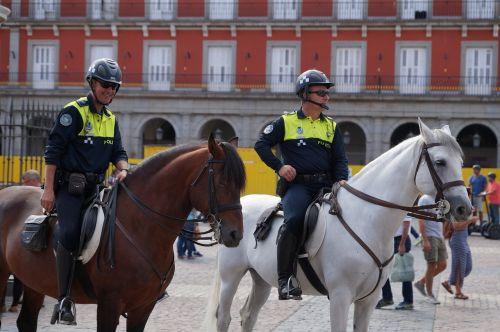 mounted police policeman horse