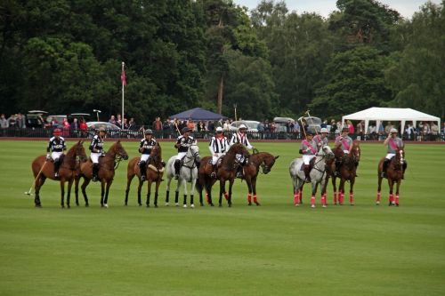 polo team competition