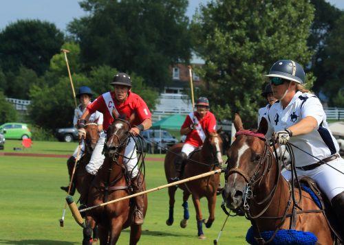 polo field games sticks