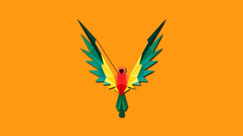 polygons bird  polygons  polygon