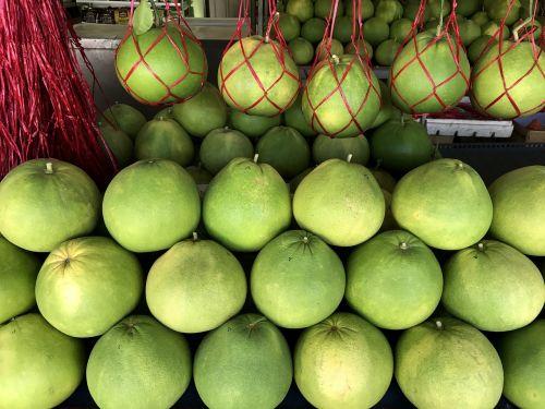 pomelo fruit tree