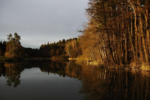 pond surface sunset