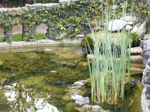 tvenkinys,žuvų tvenkinys,vanduo,akmeninė siena,ivy gamta,lošimo namų tvenkinys