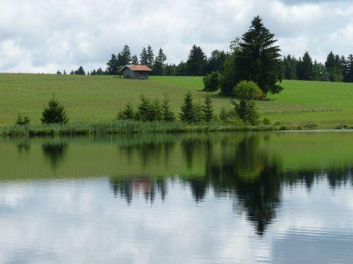 pond mirroring nature