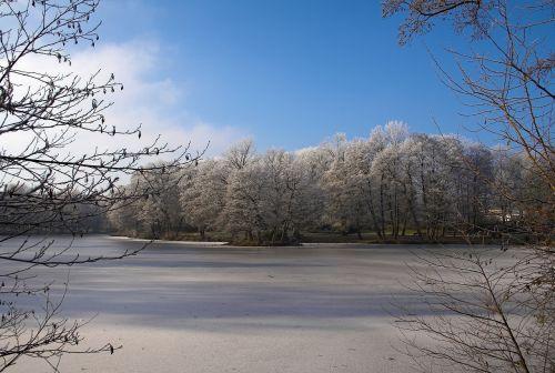pond lake nature