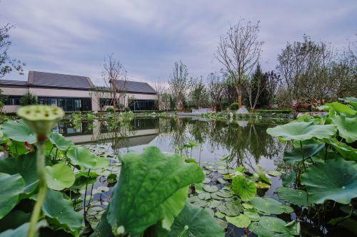 pond villa demonstration area