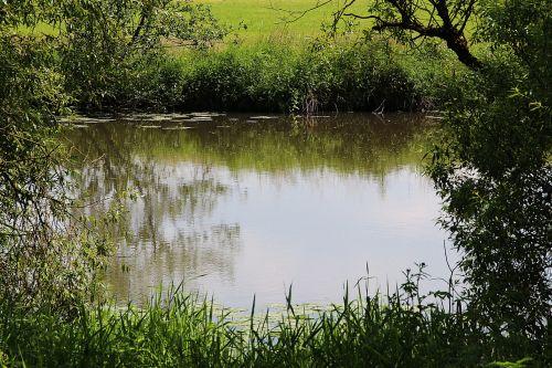pond pools river