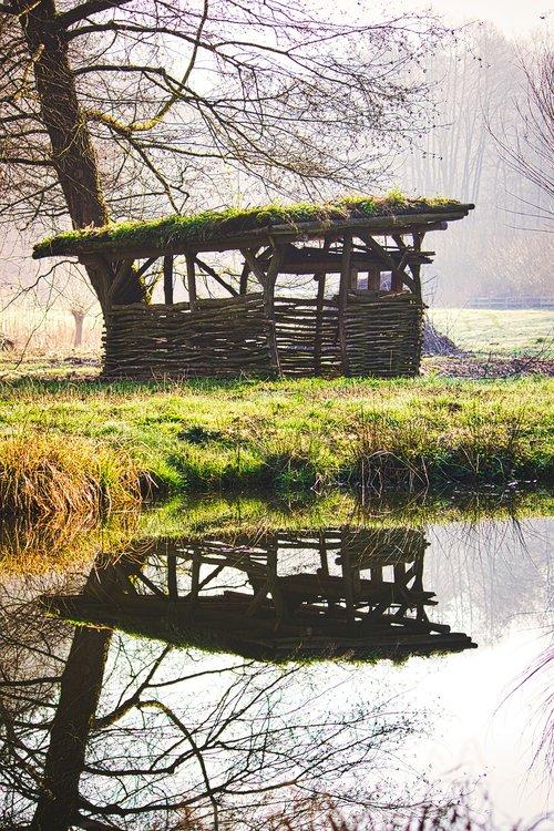 pond  stall  flock