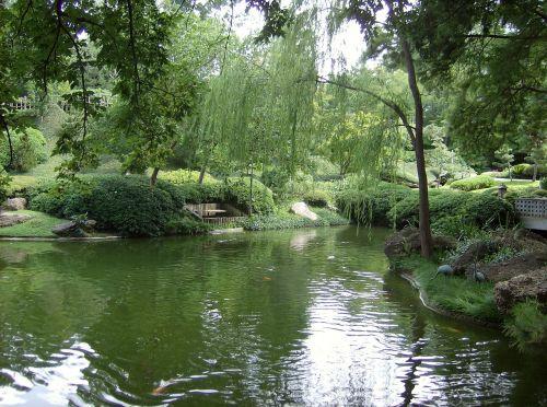 pond botanic gardens fort worth