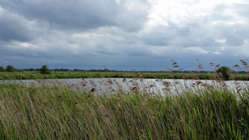 pond pools east frisia