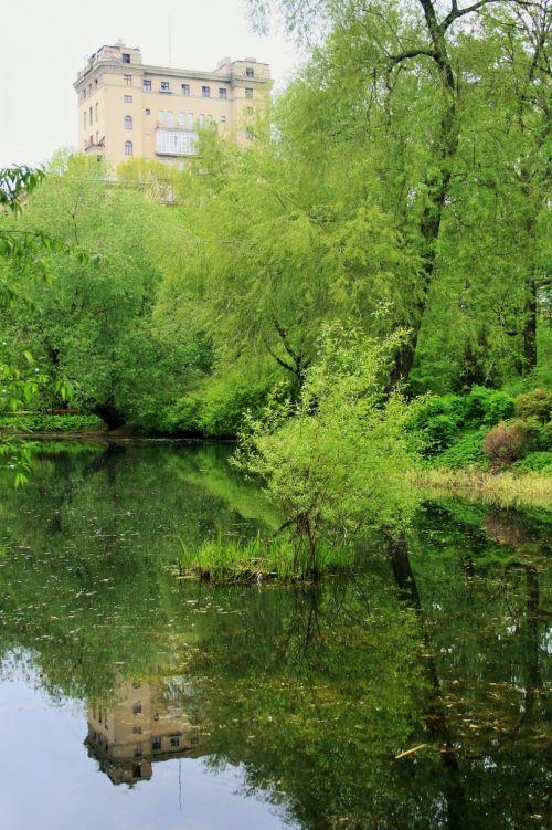 Pond, Botanical Gardens, Moscow