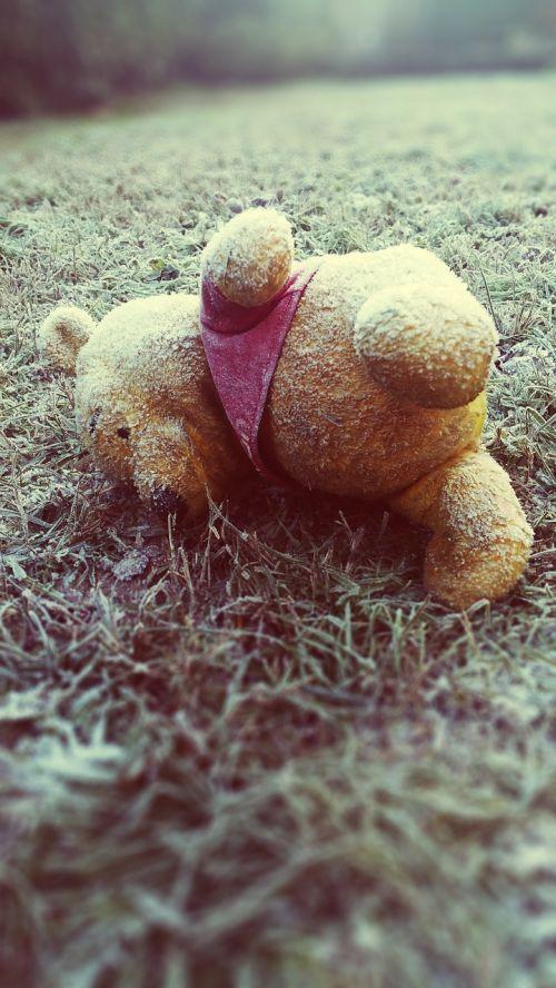 pooh death cold
