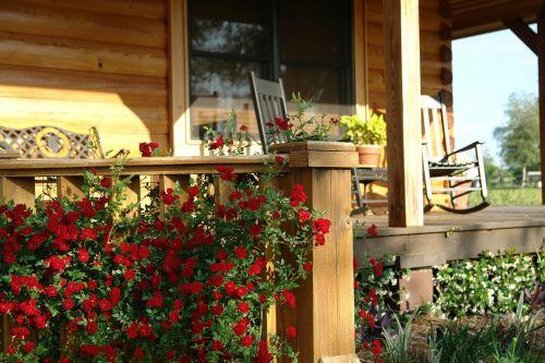 porch farm roses