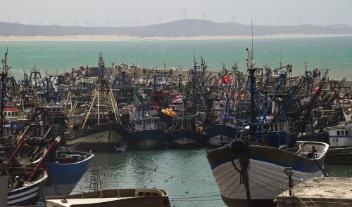 port fishing boats morocco
