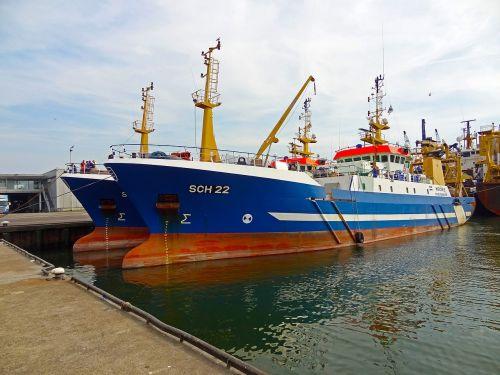 port docks scheveningen