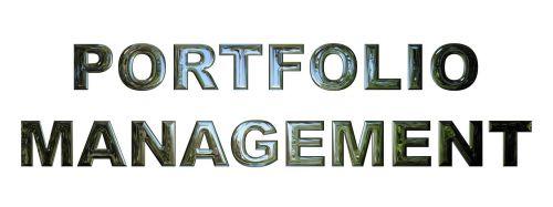 portfolio management business management