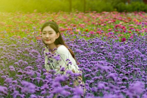 portrait sea of flowers late stage