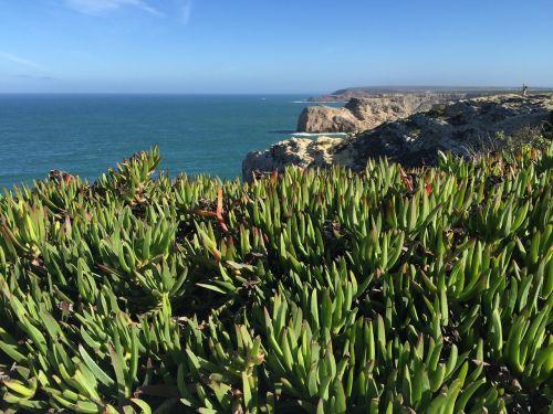 portugal coast sagres