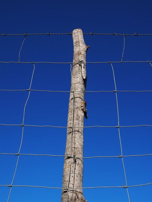 post pile fence